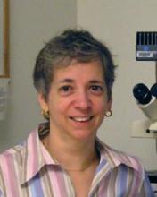 UVA Biology People Claire Cronmiller